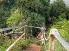 kauai_2010-378
