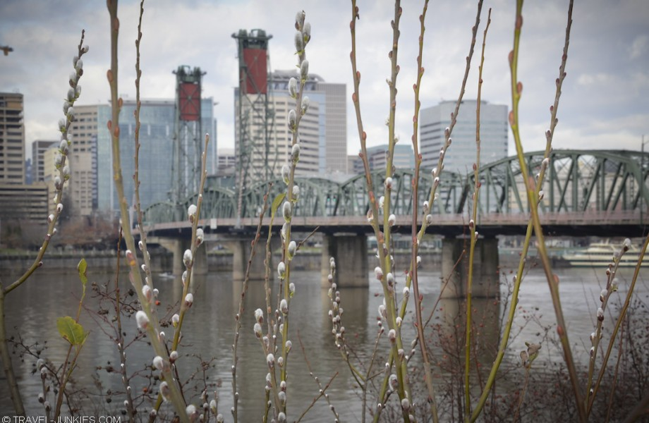 Photo of the Week: Spring in Portland