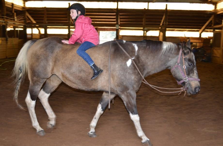Photo of the Week: Backwards Horseback Riding