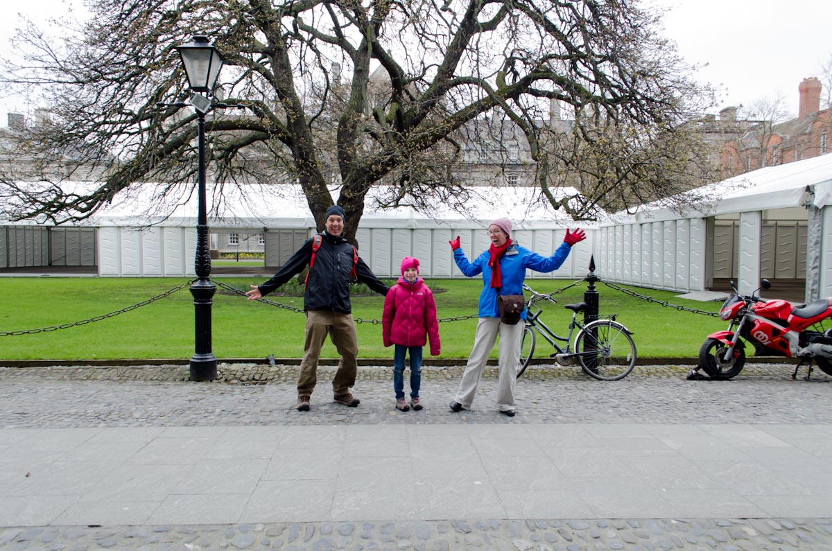 Europe's largest Oregon Maple tree at Trinity College