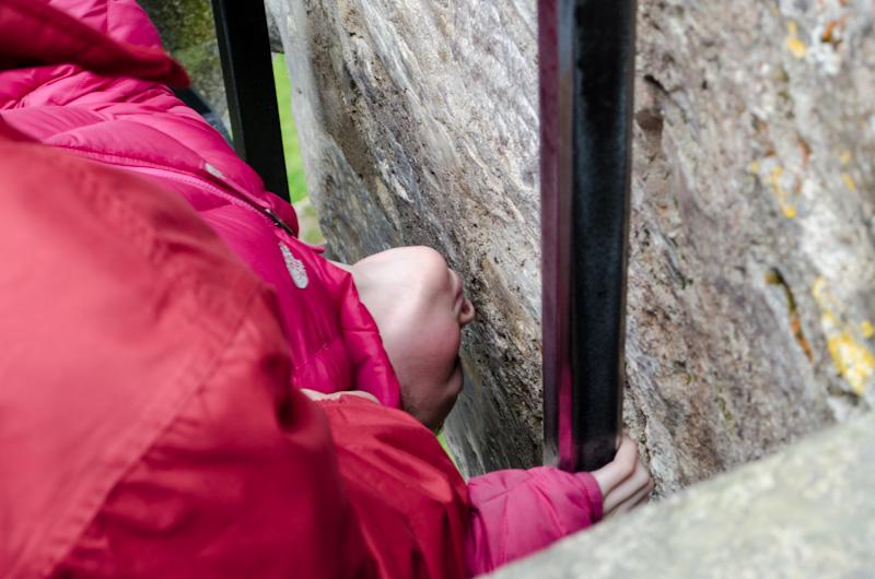 Sydney preparing to kiss the Blarney Stone