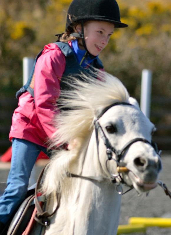 Sydney Horse Riding