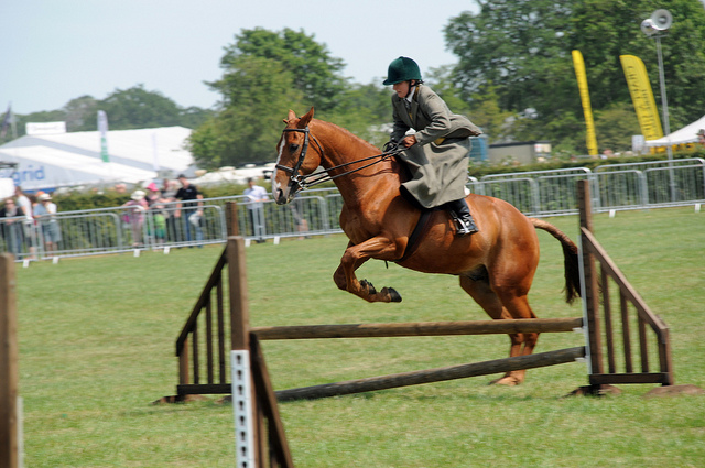 Jumping side saddle modern day picture by J. Harwood