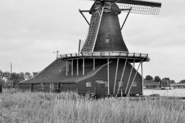 Windmill of Zaanse Schans