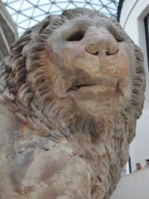 Lion at British Museum