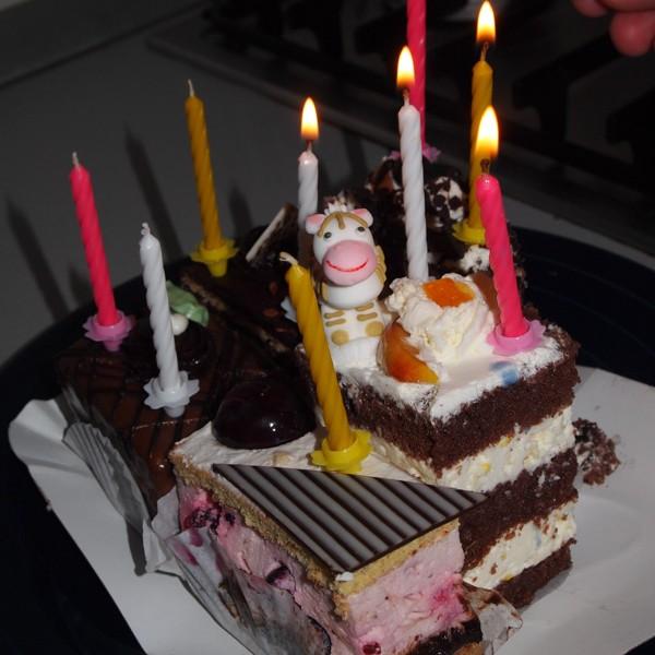 Sydney's Corner: Celebrating My 9th Birthday While Traveling