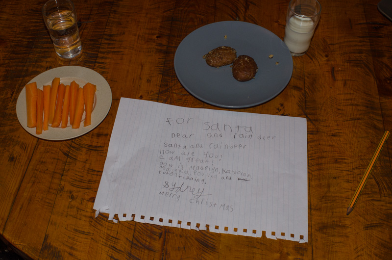 Cookies and milk for Santa and carrots and water for the reindeer