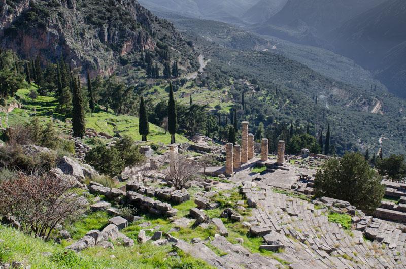 Delphi-8