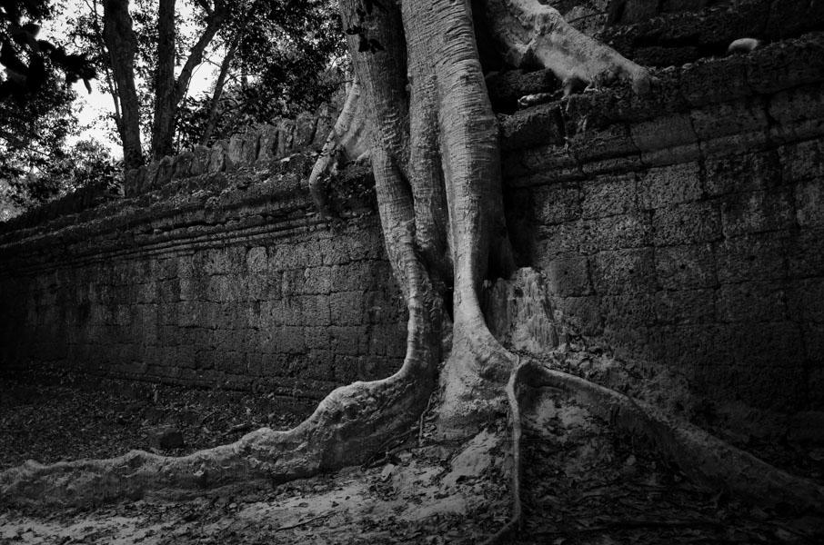 Angkor Wat BW-15