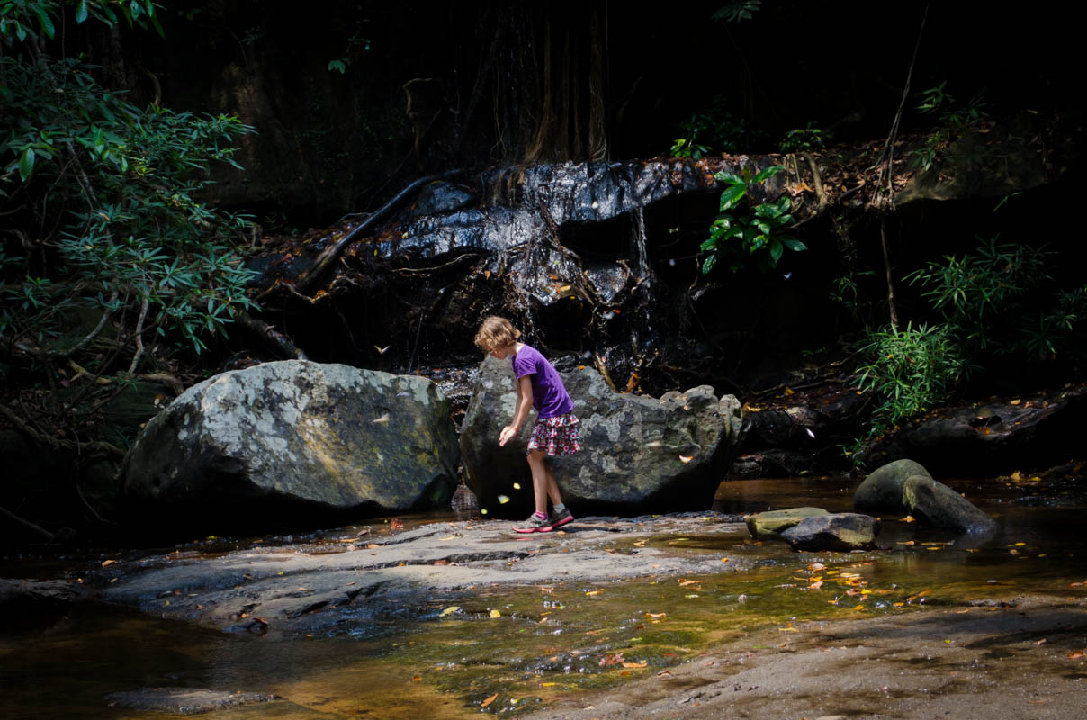 Catching butterflies at waterfall near Kbal Spean