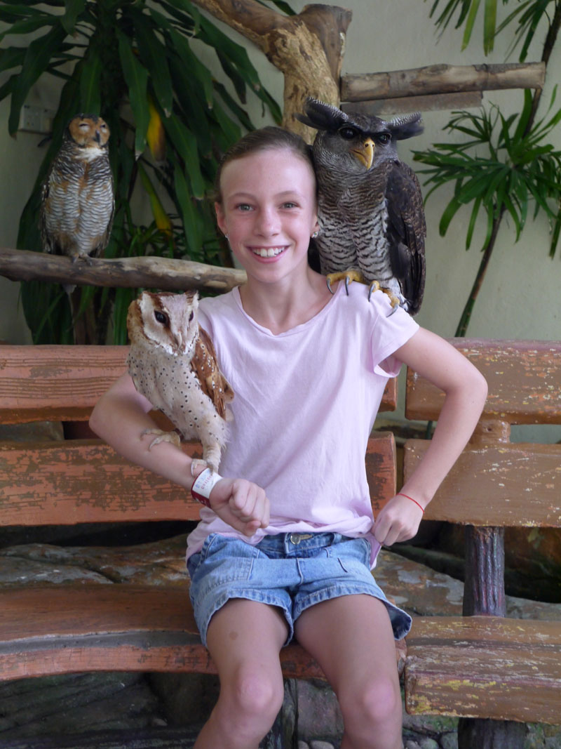 Sydney and the owls