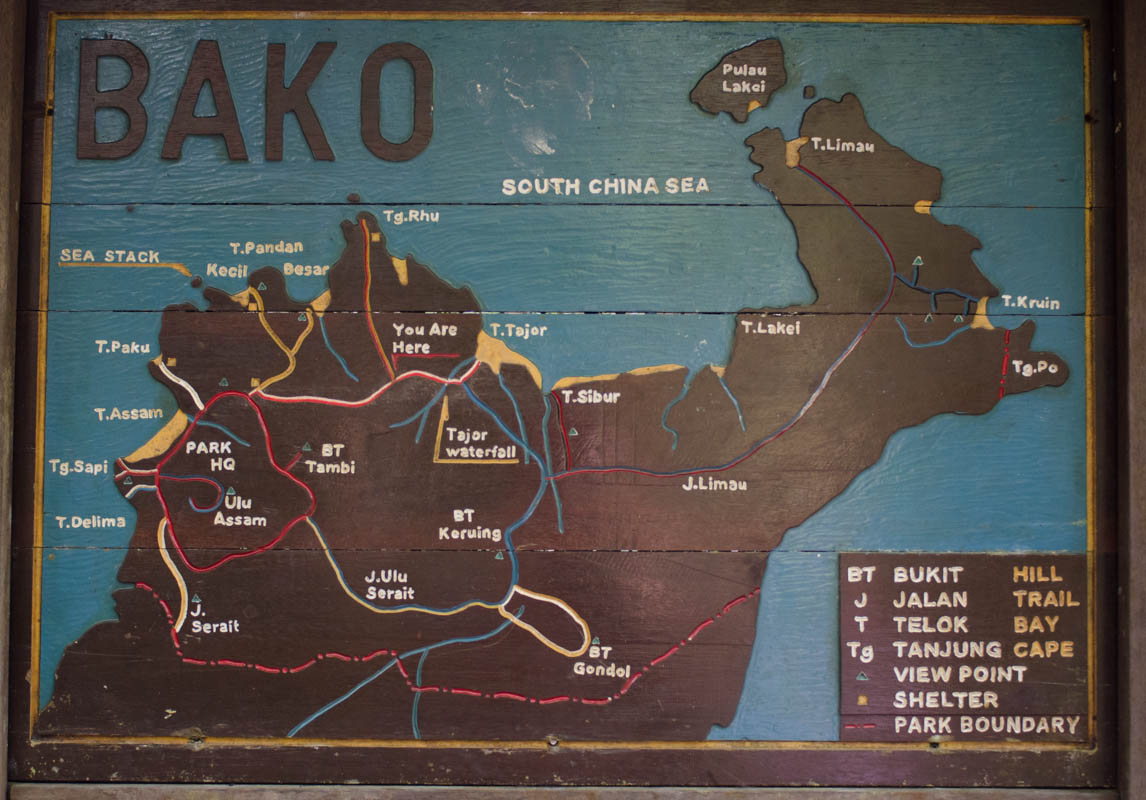 Hiking Trails in Bako National Park