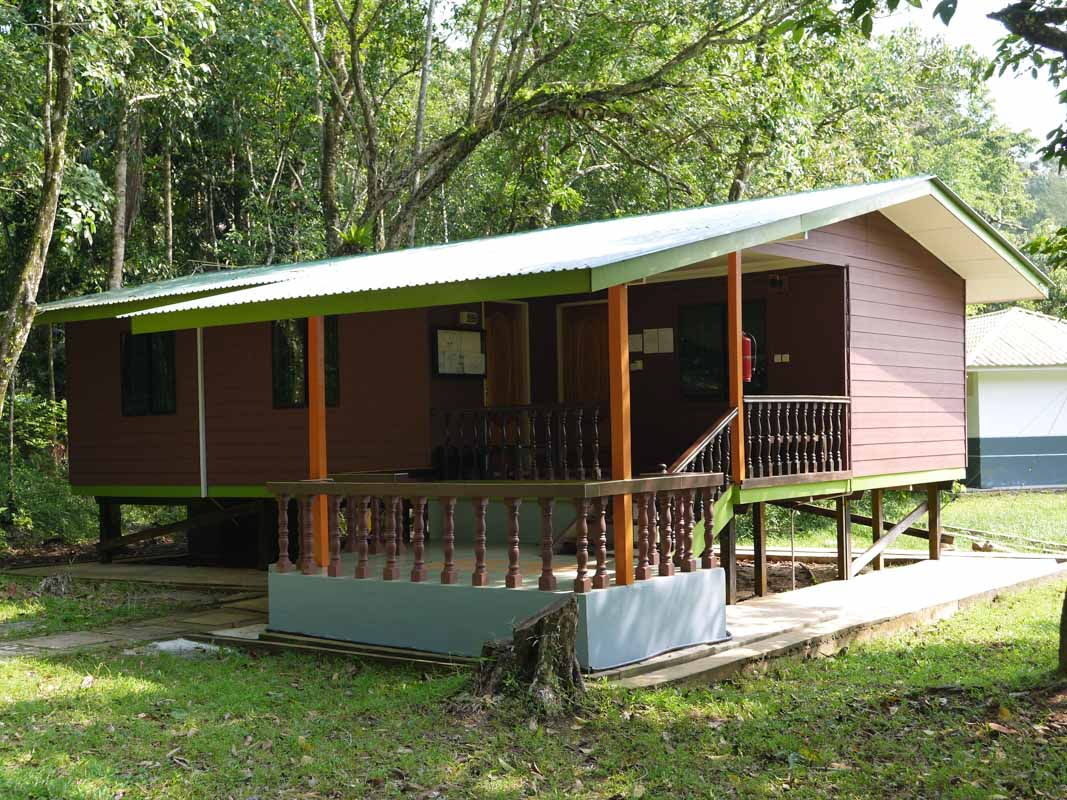 Our cabin in Bako National Park