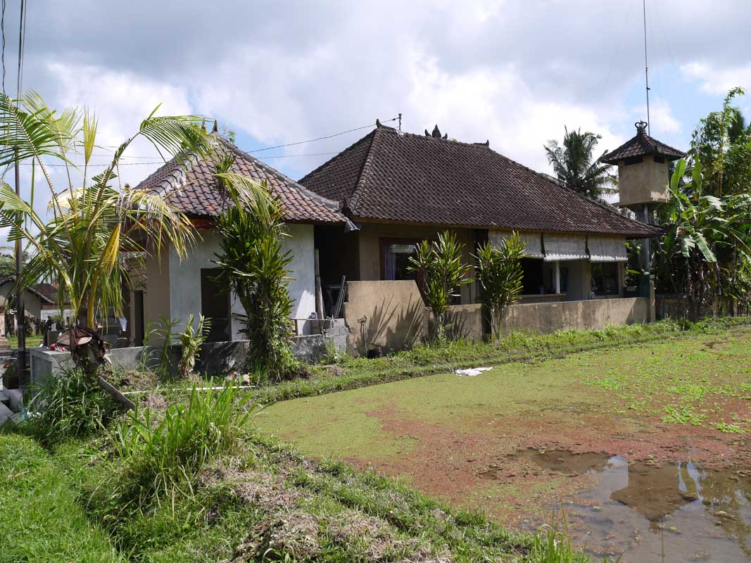 The house we rented