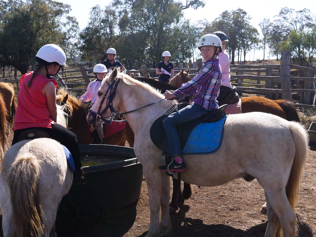 Group horse riding lessons